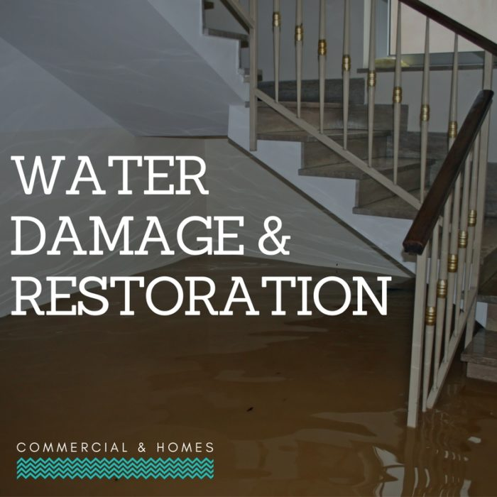 Palm Beach Water Restoration Service- Servpro, water damage restoration, fire damage restoration, mold remediation inspection- 77-We do home restoration services like Servpro such as water damage restoration, water removal, mold removal, fire and smoke damage services, fire damage restoration, mold remediation inspection, and more.