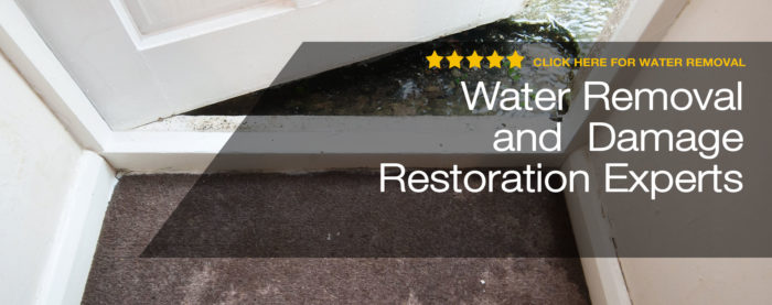 Palm Beach Water Restoration Service- Servpro, water damage restoration, fire damage restoration, mold remediation inspection- 81-We do home restoration services like Servpro such as water damage restoration, water removal, mold removal, fire and smoke damage services, fire damage restoration, mold remediation inspection, and more.
