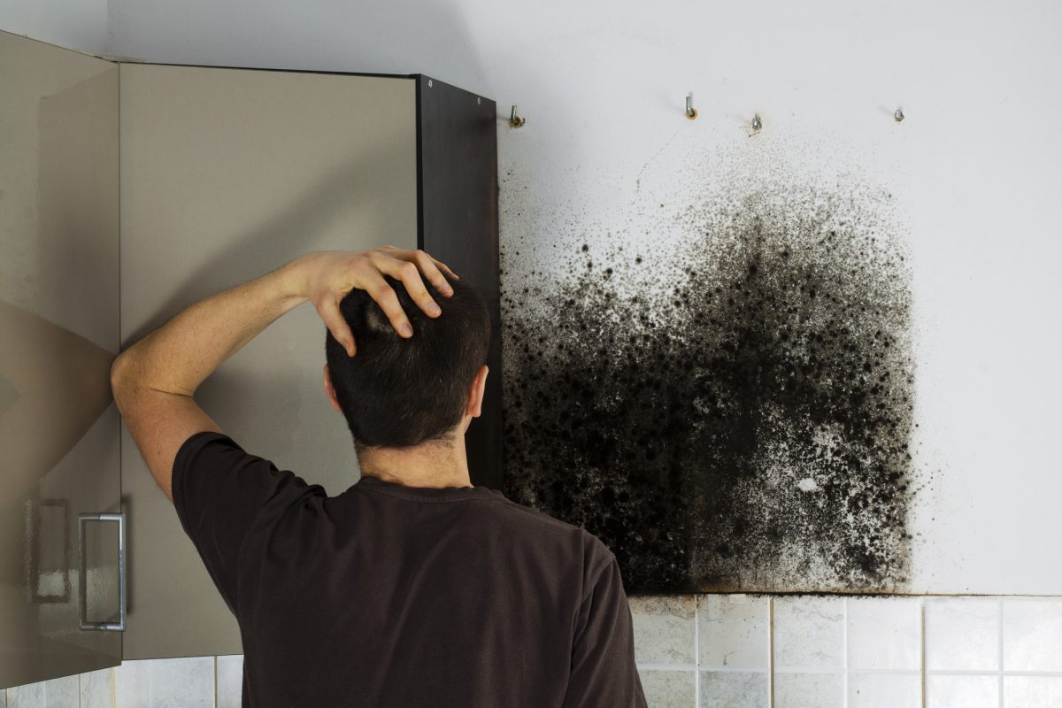 Smoke Cleanup-Palm Beach Water Restoration Services-We do home restoration services like Servpro such as water damage restoration, water removal, mold removal, fire and smoke damage services, fire damage restoration, mold remediation inspection, and more.